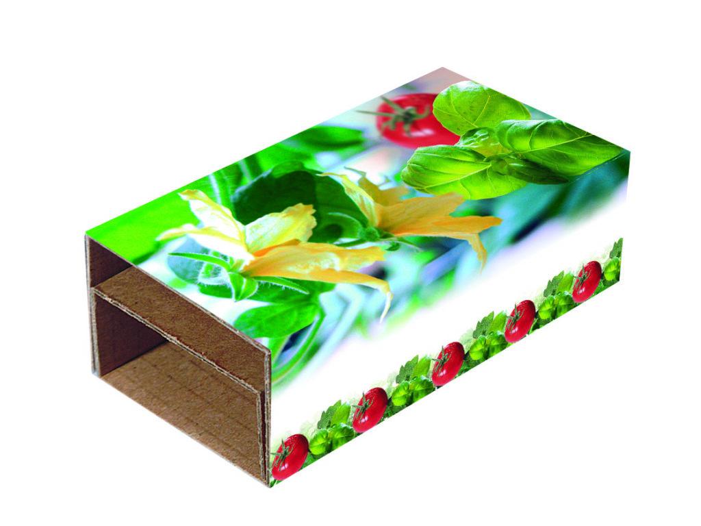 2 květináčky - bazalka a rajče