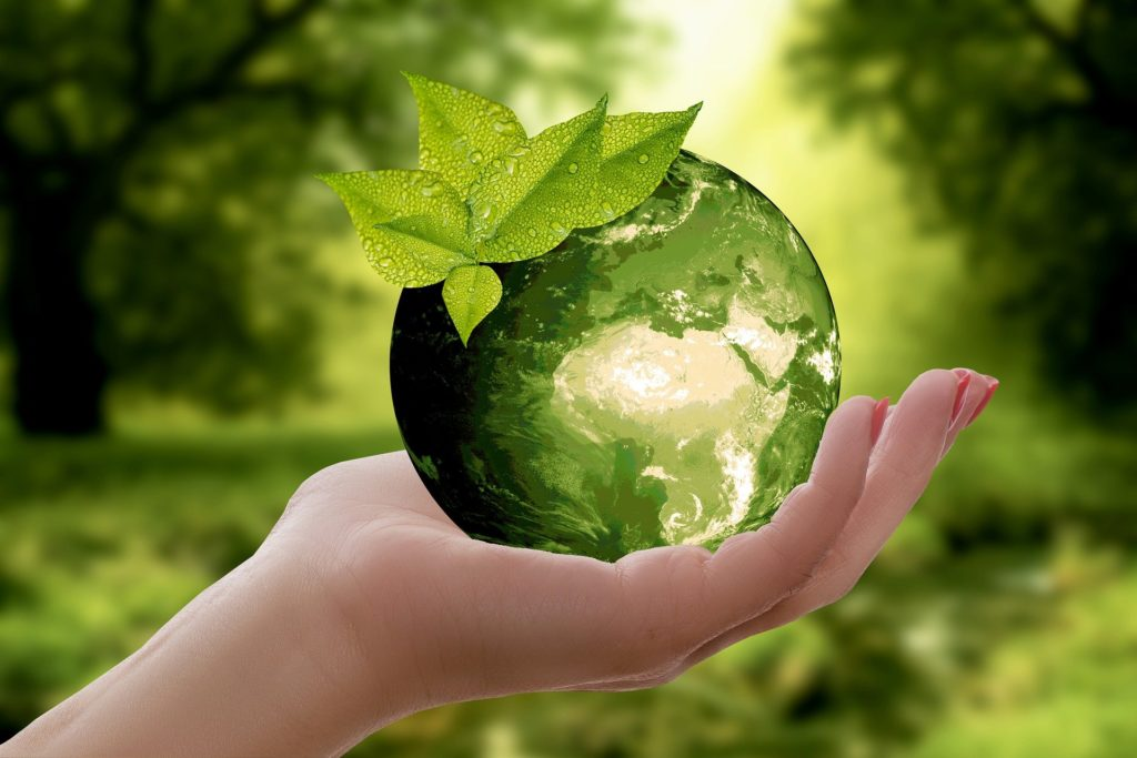 Online katalogy – ekologické reklamní předměty
